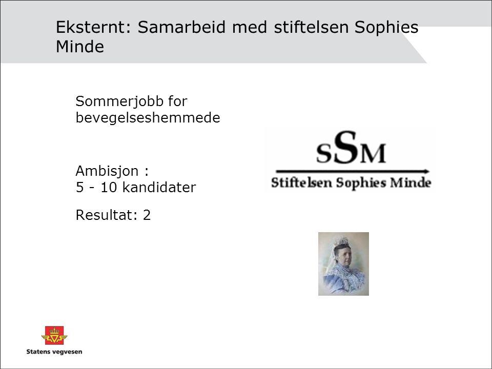 Eksternt: Samarbeid med stiftelsen Sophies Minde Sommerjobb for bevegelseshemmede Ambisjon : 5 - 10 kandidater Resultat: 2