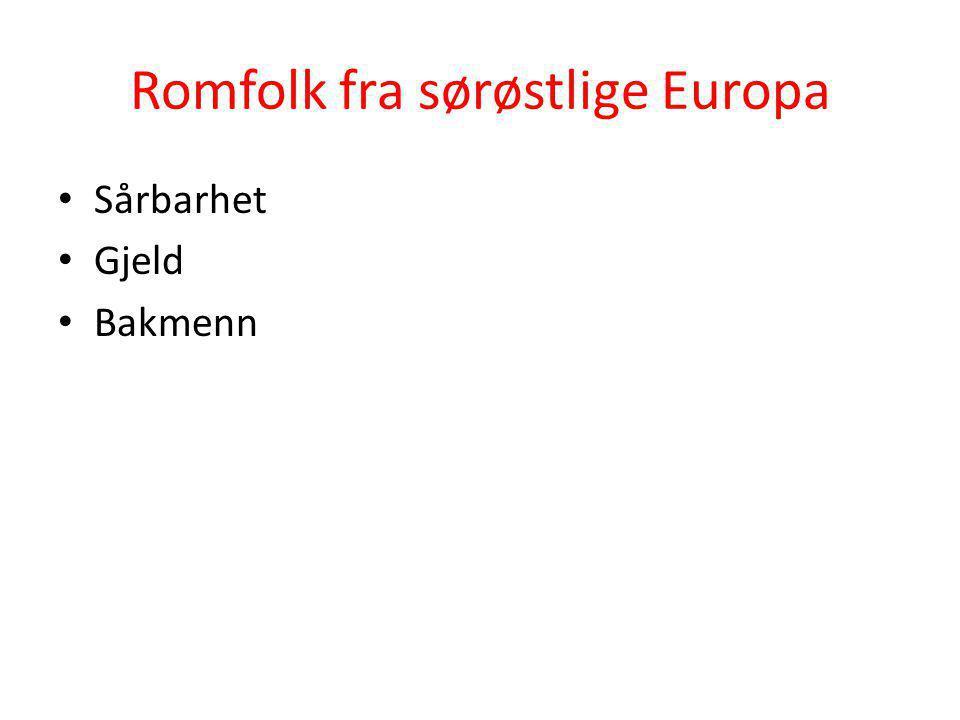 Romfolk fra sørøstlige Europa • Sårbarhet • Gjeld • Bakmenn