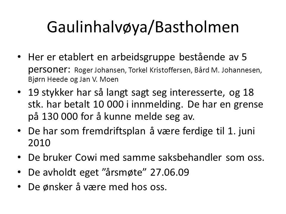 Gaulinhalvøya/Bastholmen • Her er etablert en arbeidsgruppe bestående av 5 personer: Roger Johansen, Torkel Kristoffersen, Bård M. Johannesen, Bjørn H