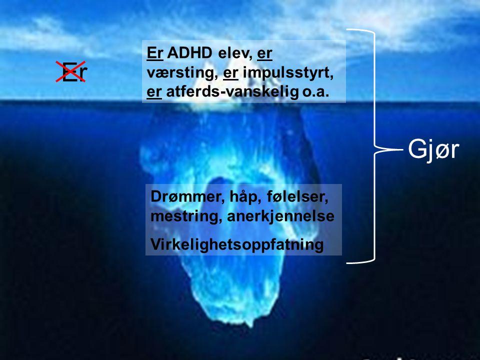 Drømmer, håp, følelser, mestring, anerkjennelse Virkelighetsoppfatning Er ADHD elev, er værsting, er impulsstyrt, er atferds-vanskelig o.a. Er Gjør