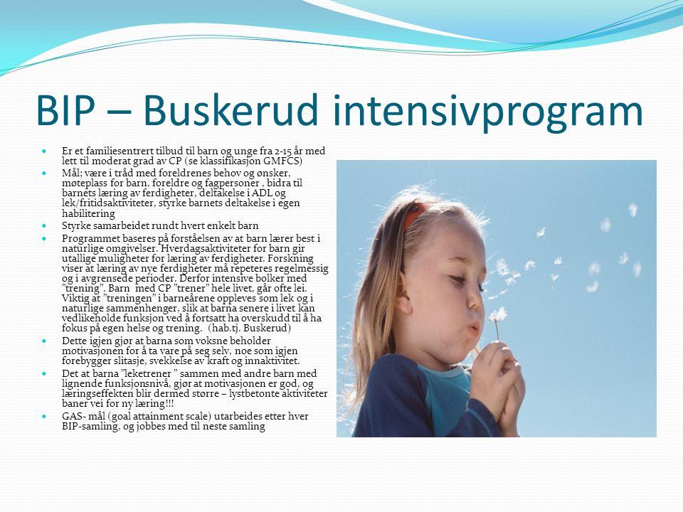 BIP – Buskerud intensivprogram  Er et familiesentrert tilbud til barn og unge fra 2-15 år med lett til moderat grad av CP (se klassifikasjon GMFCS)  Mål; være i tråd med foreldrenes behov og ønsker, møteplass for barn, foreldre og fagpersoner, bidra til barnets læring av ferdigheter, deltakelse i ADL og lek/fritidsaktiviteter, styrke barnets deltakelse i egen habilitering  Styrke samarbeidet rundt hvert enkelt barn  Programmet baseres på forståelsen av at barn lærer best i naturlige omgivelser.