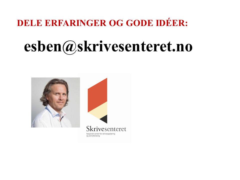 Færre karakterer – større handlingsrom for å styrkes språkopplæringsperspektivet i norskfaget?