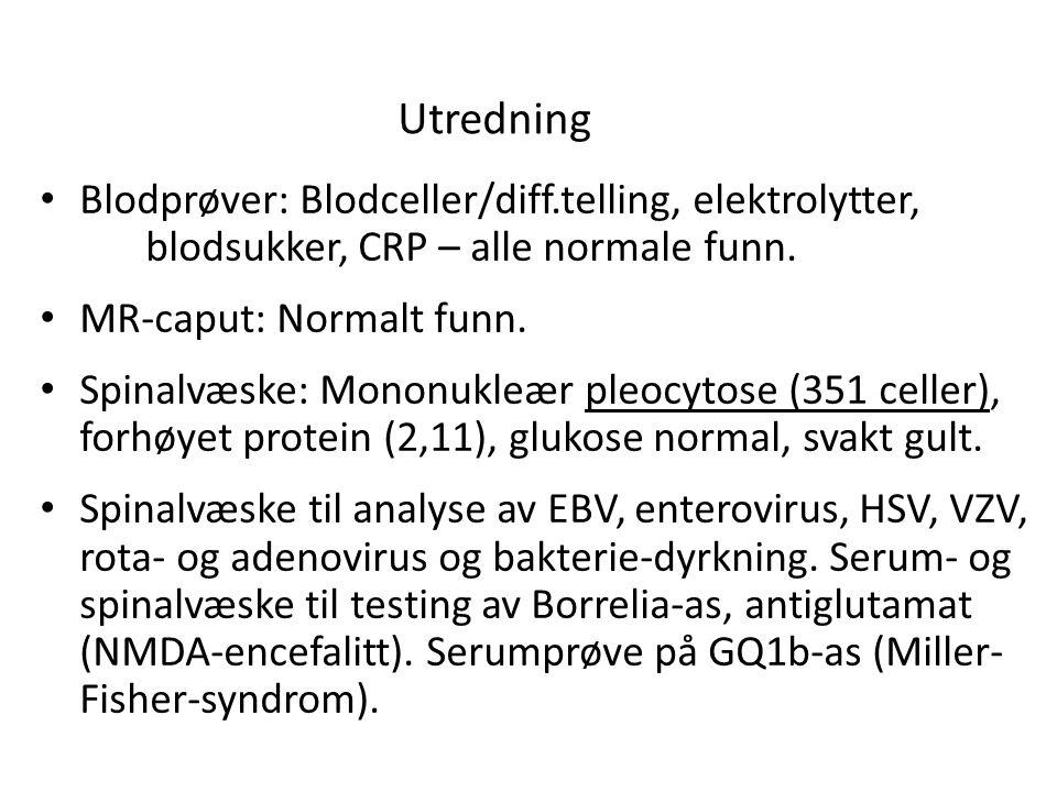Utredning • Blodprøver: Blodceller/diff.telling, elektrolytter, blodsukker, CRP – alle normale funn.