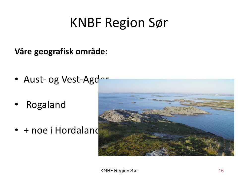 KNBF Region Sør Våre geografisk område: • Aust- og Vest-Agder • Rogaland • + noe i Hordaland KNBF Region Sør16