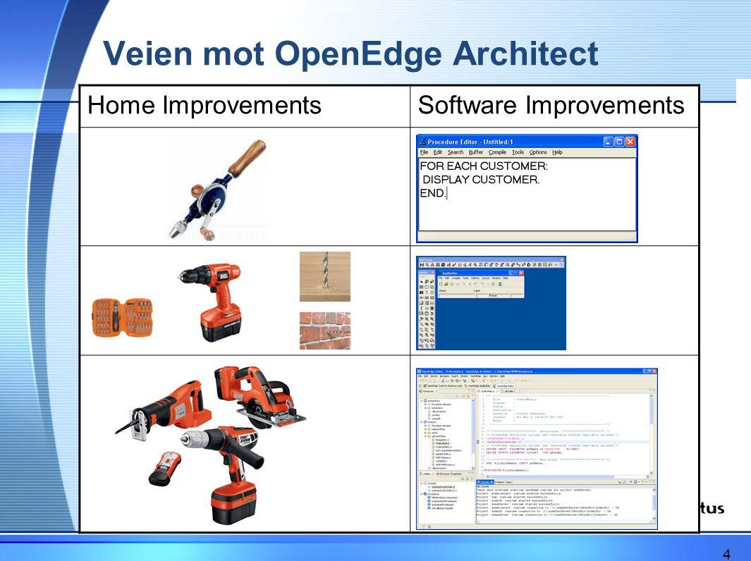 Deretter trenger du: •Innføring i OpenEdge Architect med TFS •Innføring i Visual Studio 2008 med TFS •Innføring i TFS •Innføring i teamutvikling –Prosess –Oppgaveflyt –Samhandling 15