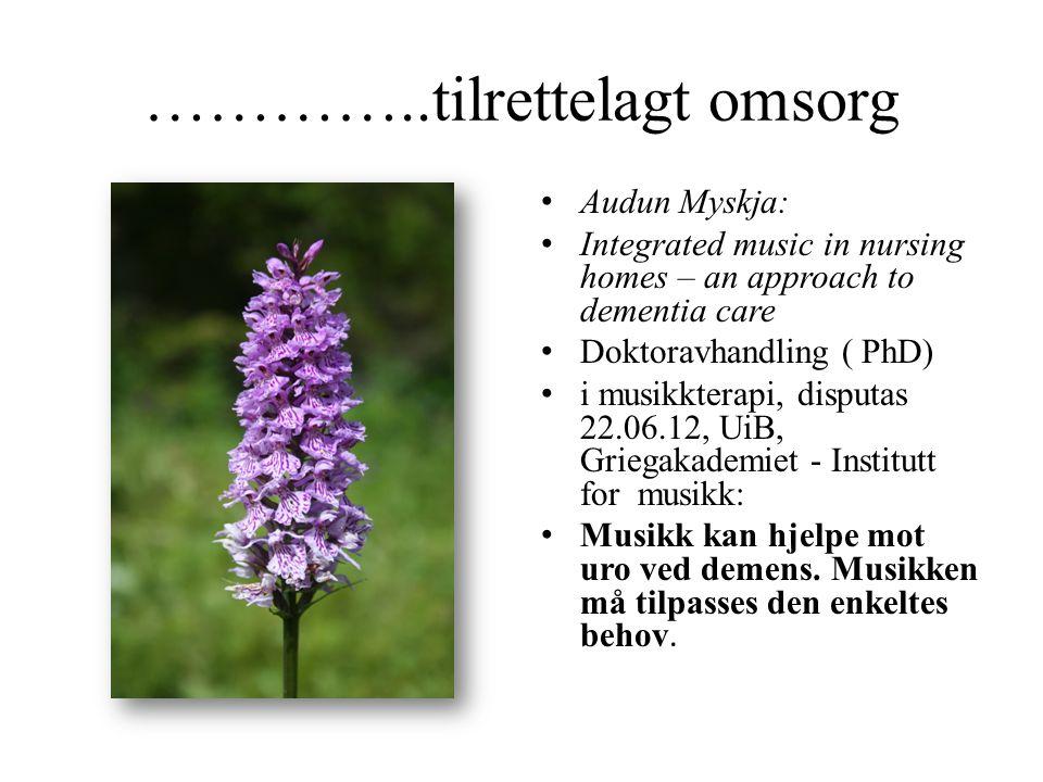 …………..tilrettelagt omsorg • Audun Myskja: • Integrated music in nursing homes – an approach to dementia care • Doktoravhandling ( PhD) • i musikkterap