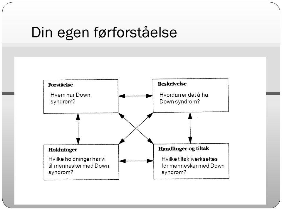 Hypotese 3  Utviklingen av både språk og minneferdighet er svakere sammenliknet med kontrollbarna