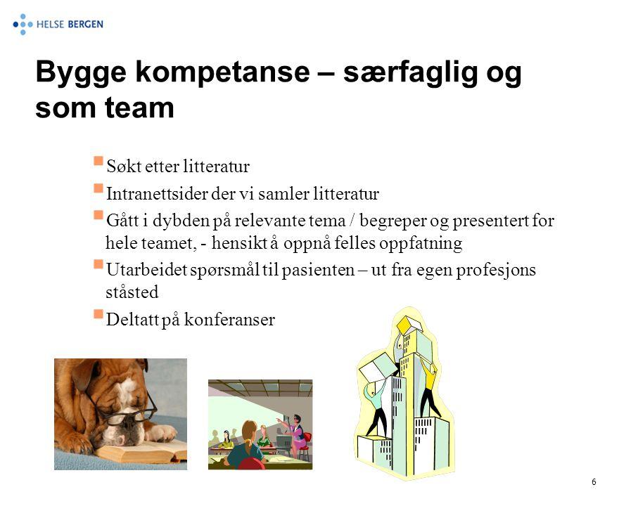 Bygge kompetanse – særfaglig og som team  Søkt etter litteratur  Intranettsider der vi samler litteratur  Gått i dybden på relevante tema / begrepe