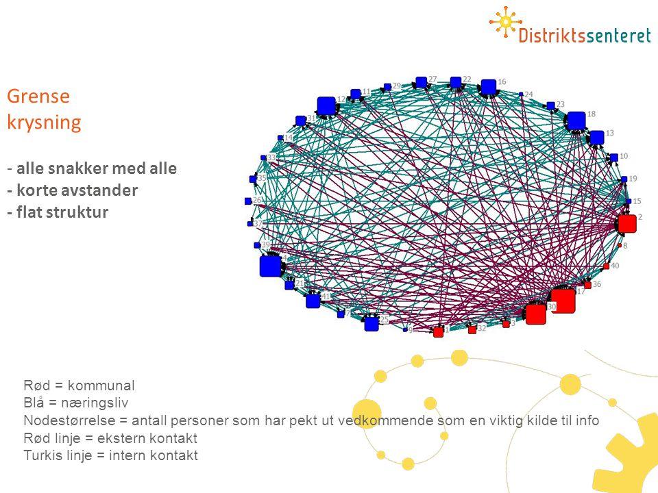 Grense krysning - alle snakker med alle - korte avstander - flat struktur Rød = kommunal Blå = næringsliv Nodestørrelse = antall personer som har pekt