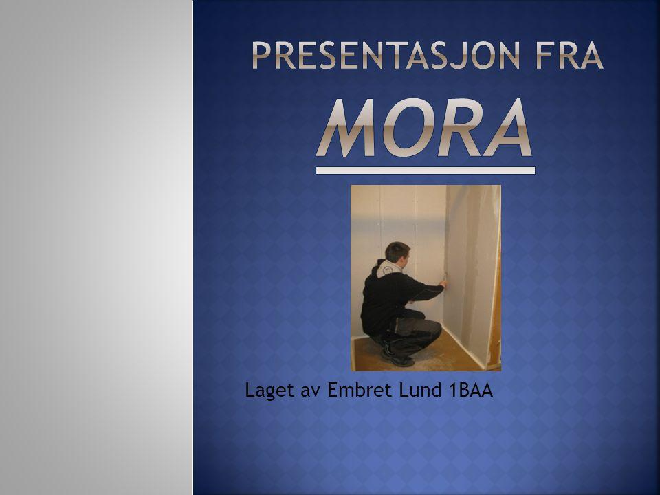 Laget av Embret Lund 1BAA