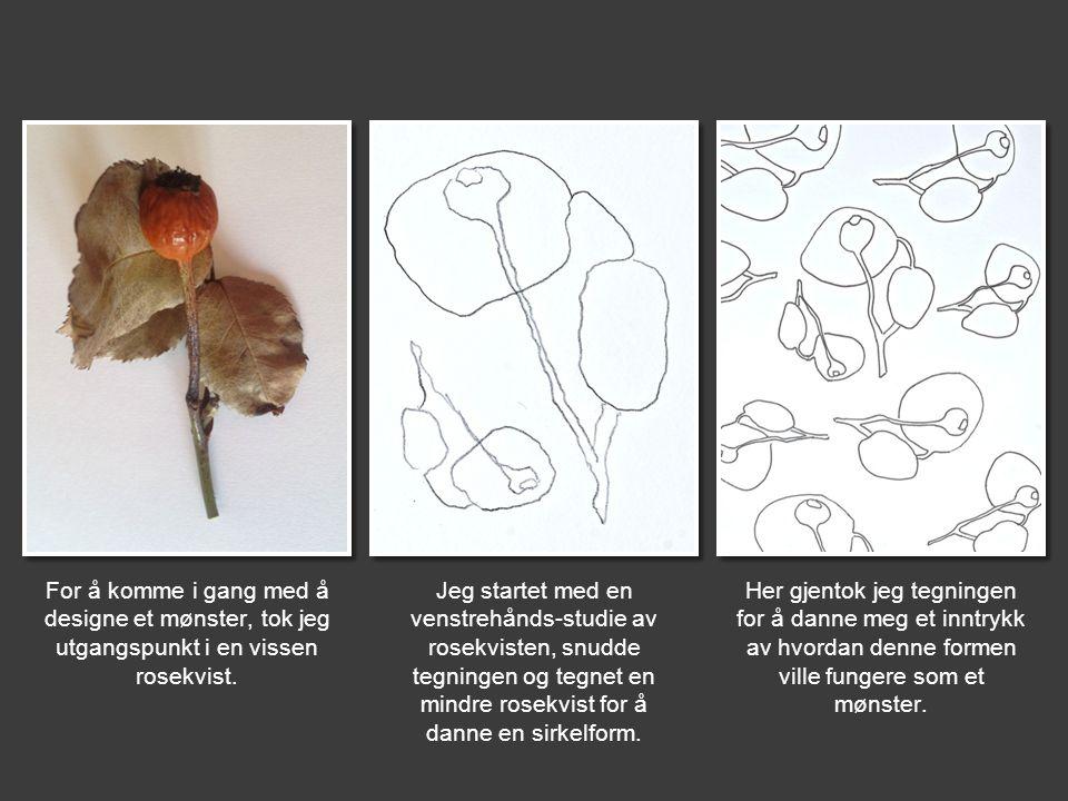 For å komme i gang med å designe et mønster, tok jeg utgangspunkt i en vissen rosekvist. Jeg startet med en venstrehånds-studie av rosekvisten, snudde