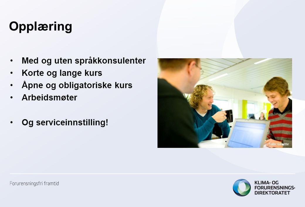 Opplæring •Med og uten språkkonsulenter •Korte og lange kurs •Åpne og obligatoriske kurs •Arbeidsmøter •Og serviceinnstilling.