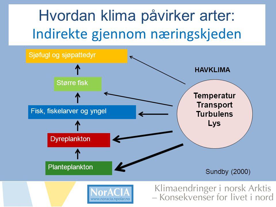 limaendringer i norsk Arktis – Knsekvenser for livet i nord Sjøfugl og sjøpattedyr Planteplankton Dyreplankton Fisk, fiskelarver og yngel Større fisk