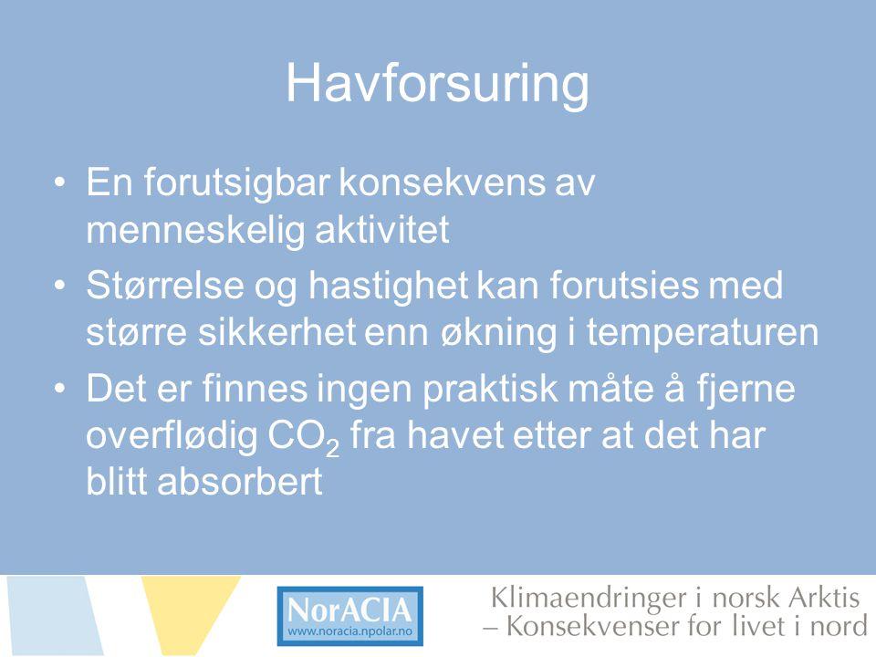 limaendringer i norsk Arktis – Knsekvenser for livet i nord Havforsuring •En forutsigbar konsekvens av menneskelig aktivitet •Størrelse og hastighet k