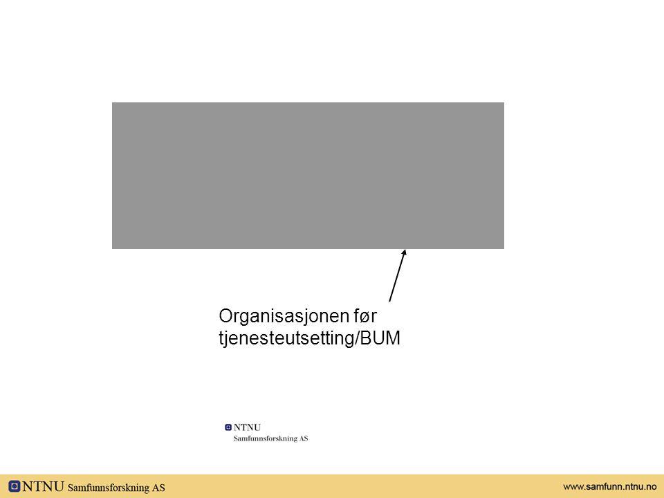 Organisasjon Organisasjonen før tjenesteutsetting/BUM