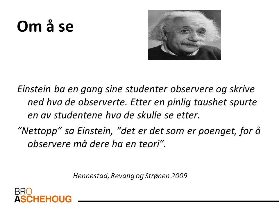 Om å se Einstein ba en gang sine studenter observere og skrive ned hva de observerte. Etter en pinlig taushet spurte en av studentene hva de skulle se