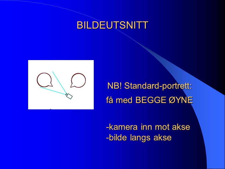 BILDEUTSNITT NB! Standard-portrett: få med BEGGE ØYNE -kamera inn mot akse -bilde langs akse