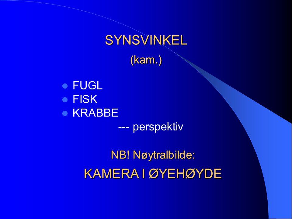 SYNSVINKEL (kam.)  FUGL  FISK  KRABBE --- perspektiv NB! Nøytralbilde: KAMERA I ØYEHØYDE