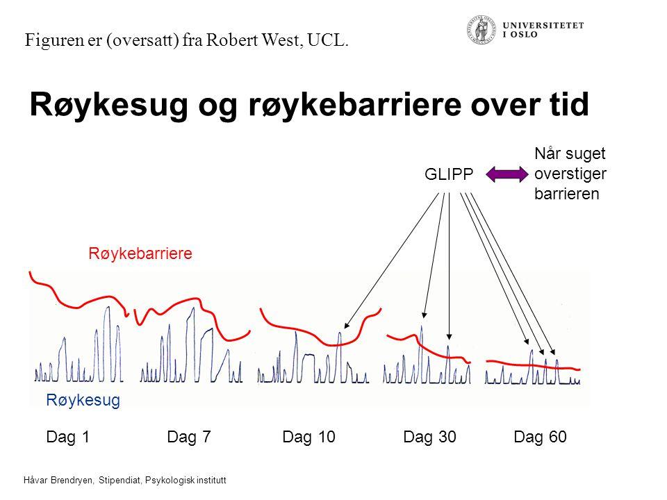 Håvar Brendryen, Stipendiat, Psykologisk institutt Røykesug og røykebarriere over tid Dag 1Dag 7Dag 10Dag 30Dag 60 GLIPP Røykebarriere Røykesug Figuren er (oversatt) fra Robert West, UCL.
