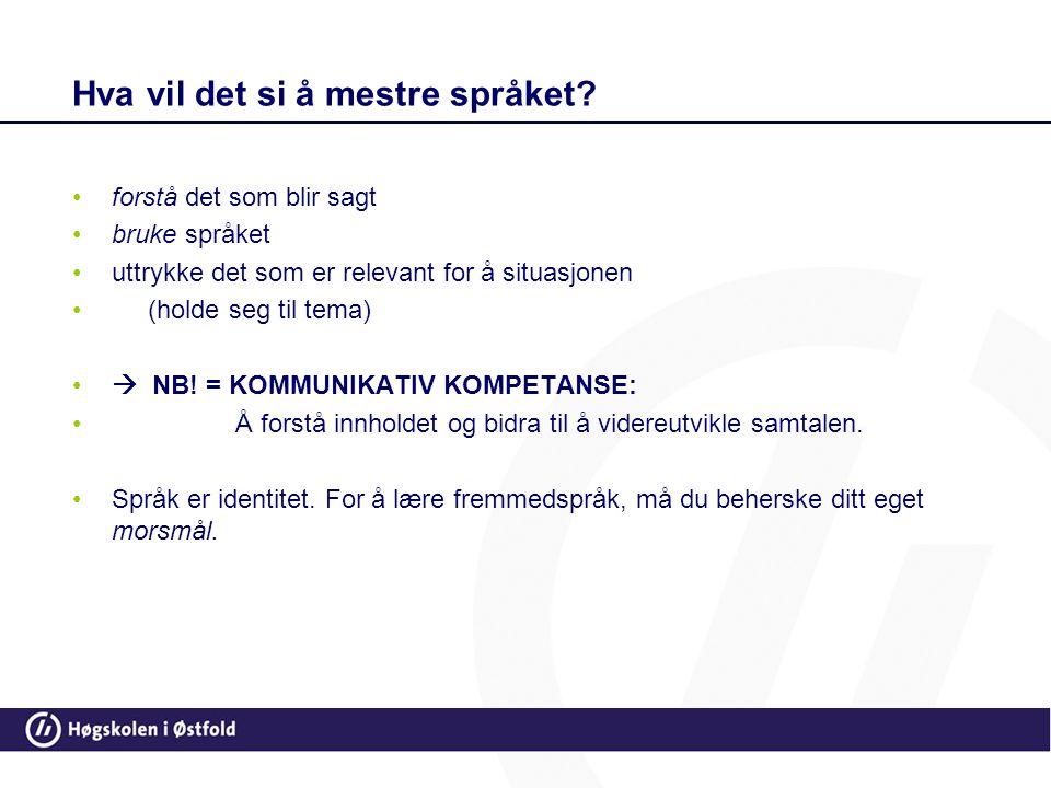 Hva vil det si å mestre språket? •forstå det som blir sagt •bruke språket •uttrykke det som er relevant for å situasjonen • (holde seg til tema) •  N