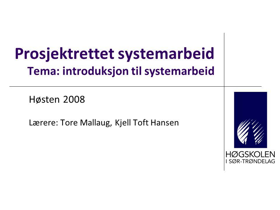 Prosjektrettet systemarbeid Tema: introduksjon til systemarbeid Høsten 2008 Lærere: Tore Mallaug, Kjell Toft Hansen
