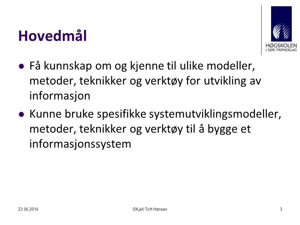 Hva er systemering.