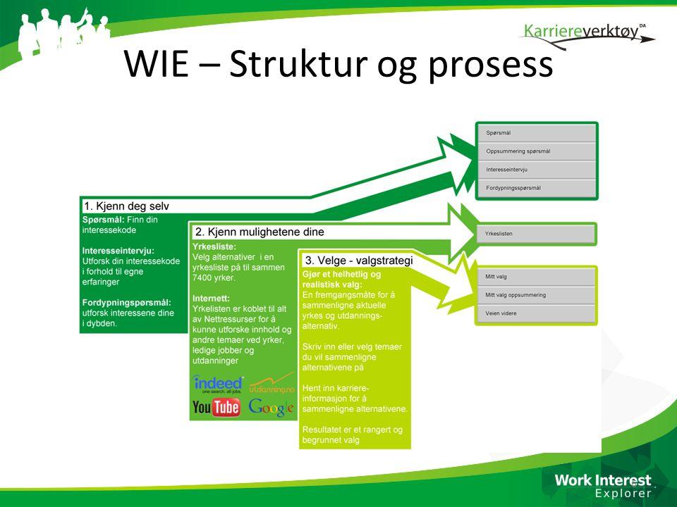 WIE – Struktur og prosess 6