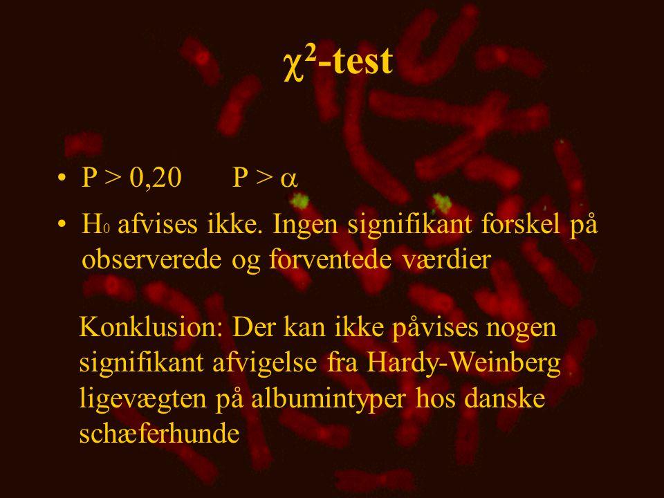 Kønsbunden nedarvning X-kobling •Der er ikke nødvendigvis samme genotypefrekvens hos hanner og hunner •Hos hanpattedyr er alle kønsbundne gener maternelle •Hos hanpattedyr udtrykkes kønsbundne gener direkte, dvs.