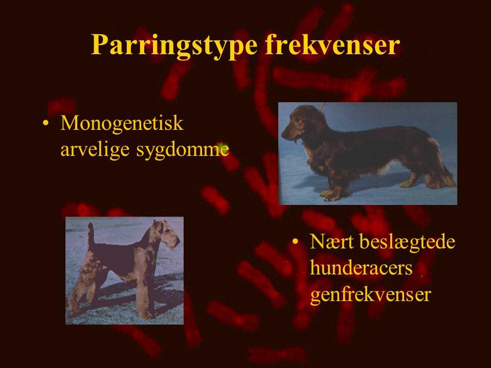 Gametfrekvenser ved kobling og koblingsuligevægt •Gametfrekvenser anvendes, når gener på to loci betragtes samtidigt •Det kan ske at en bestemt markørallel altid forefindes sammen med et skadeligt gen på et andet locus
