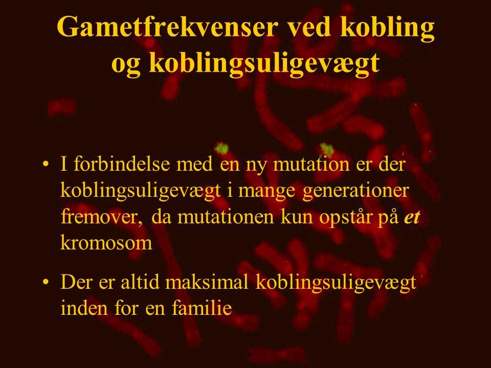 Gametfrekvenser ved kobling og koblingsuligevægt •I forbindelse med en ny mutation er der koblingsuligevægt i mange generationer fremover, da mutation