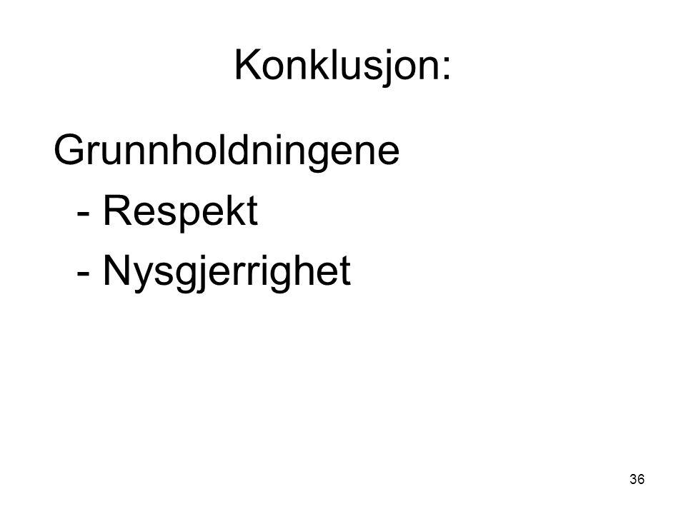 36 Konklusjon: Grunnholdningene - Respekt - Nysgjerrighet