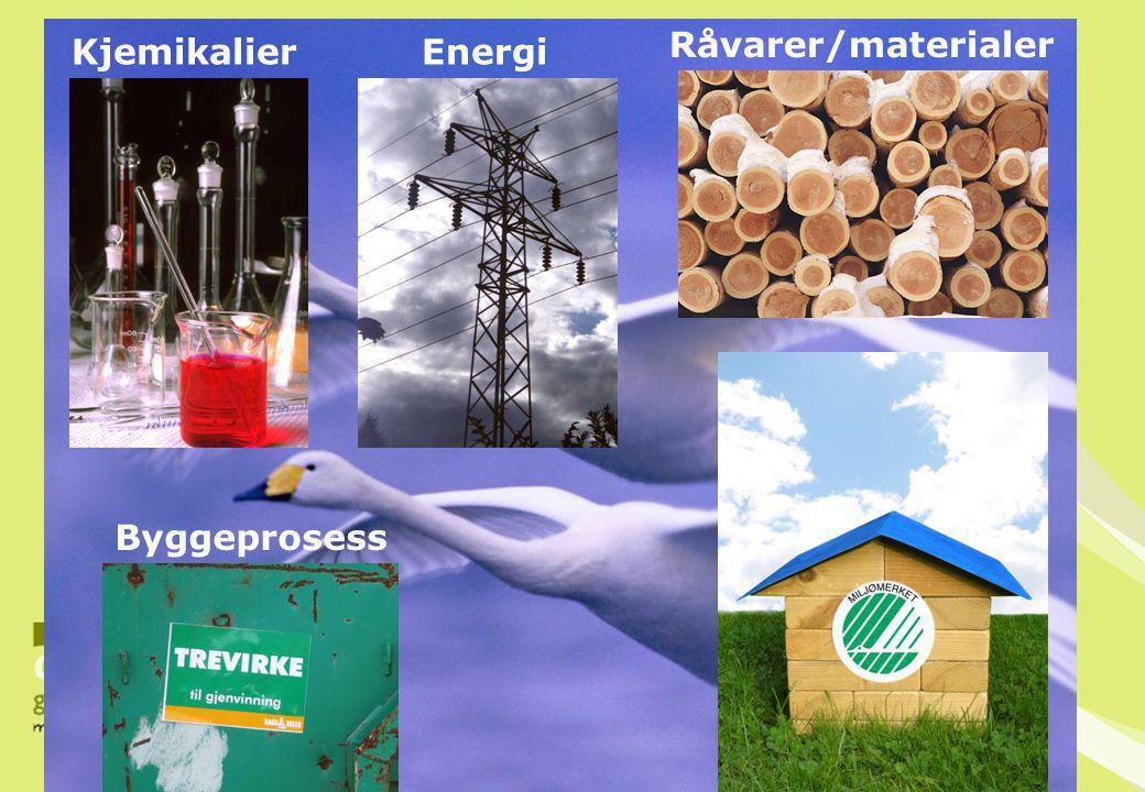 Byggeprosess KjemikalierEnergi Råvarer/materialer