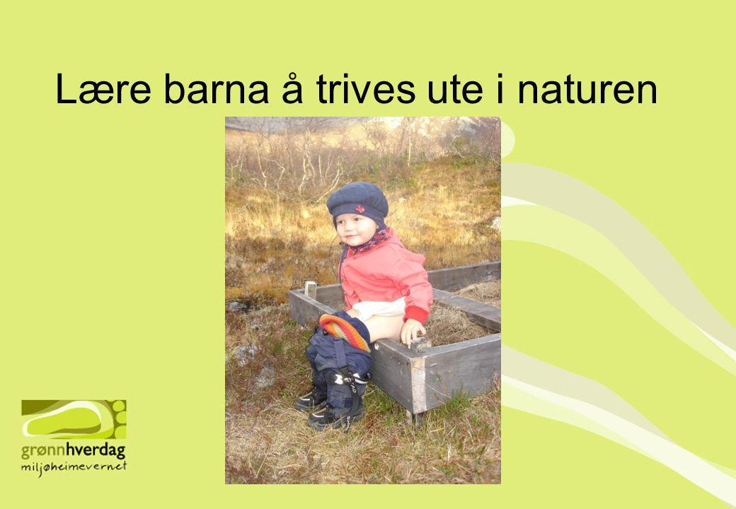 Lære barna å trives ute i naturen