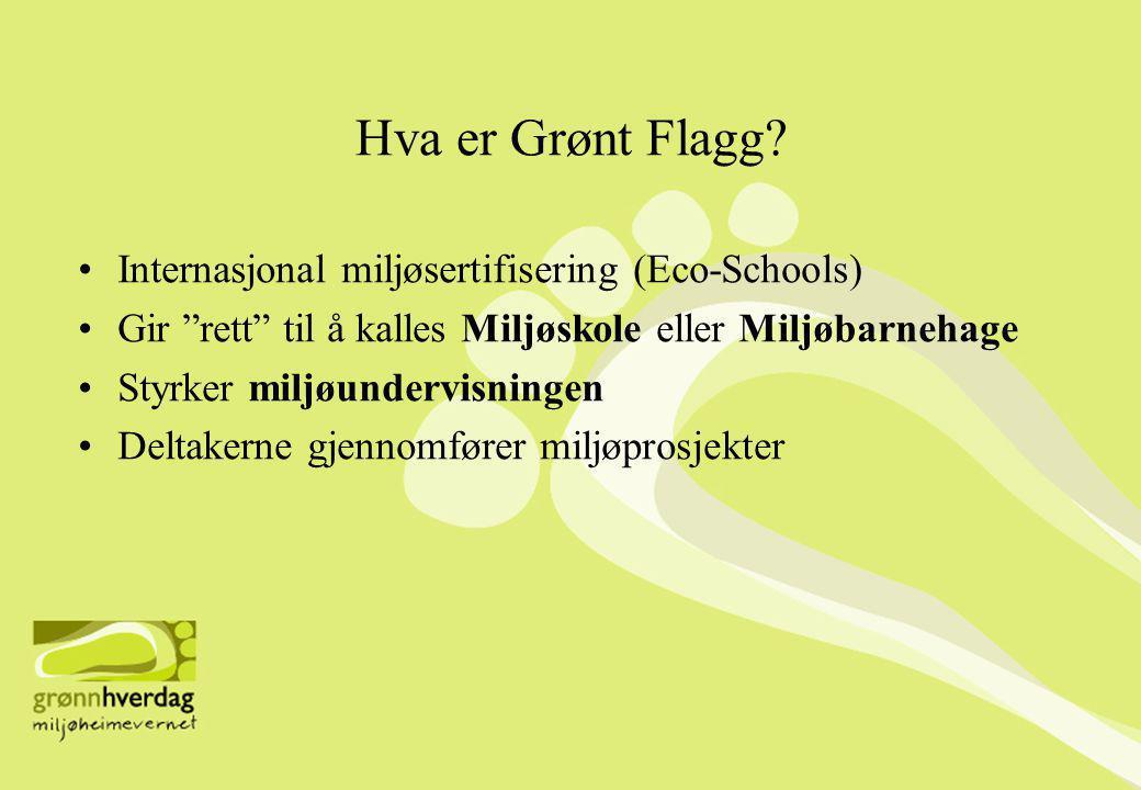 Hva er Grønt Flagg.