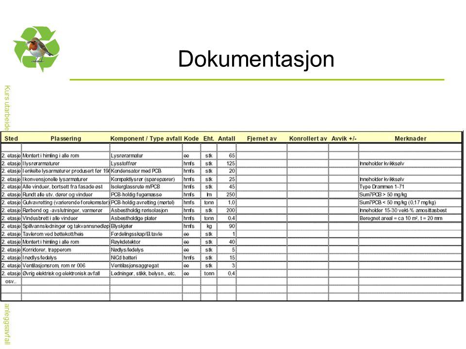 Kurs utarbeidet av nettverket for Nasjonal handlingsplan for bygg- og anleggsavfall Dokumentasjon