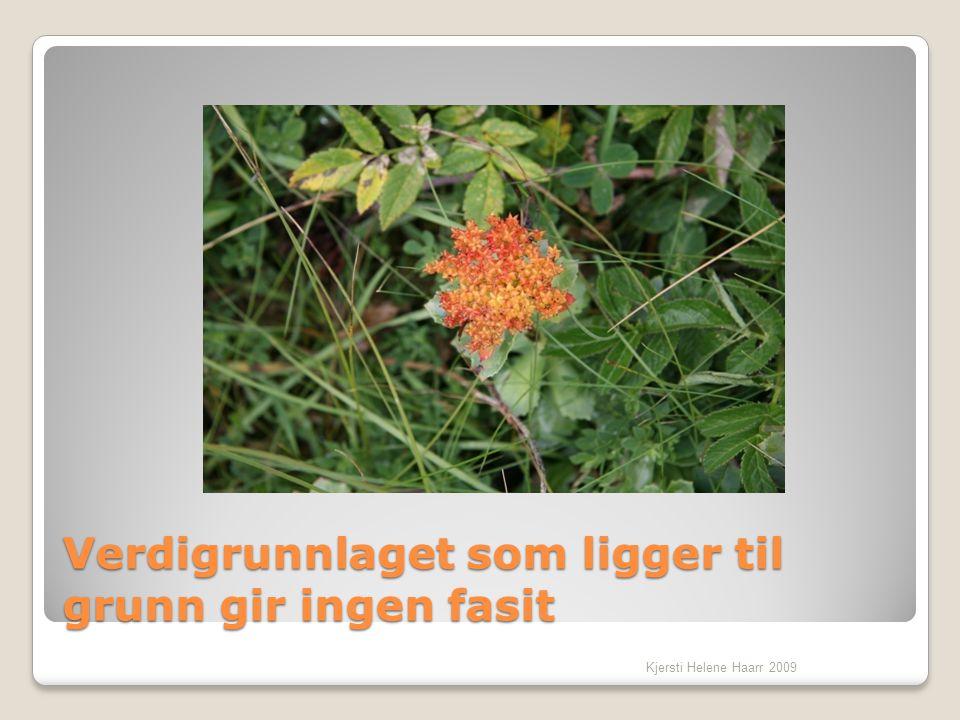 Verdigrunnlaget som ligger til grunn gir ingen fasit Kjersti Helene Haarr 2009