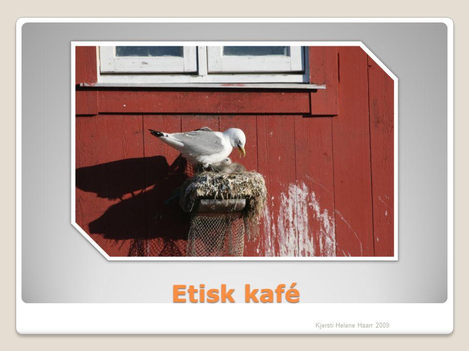 Etisk kafé Kjersti Helene Haarr 2009