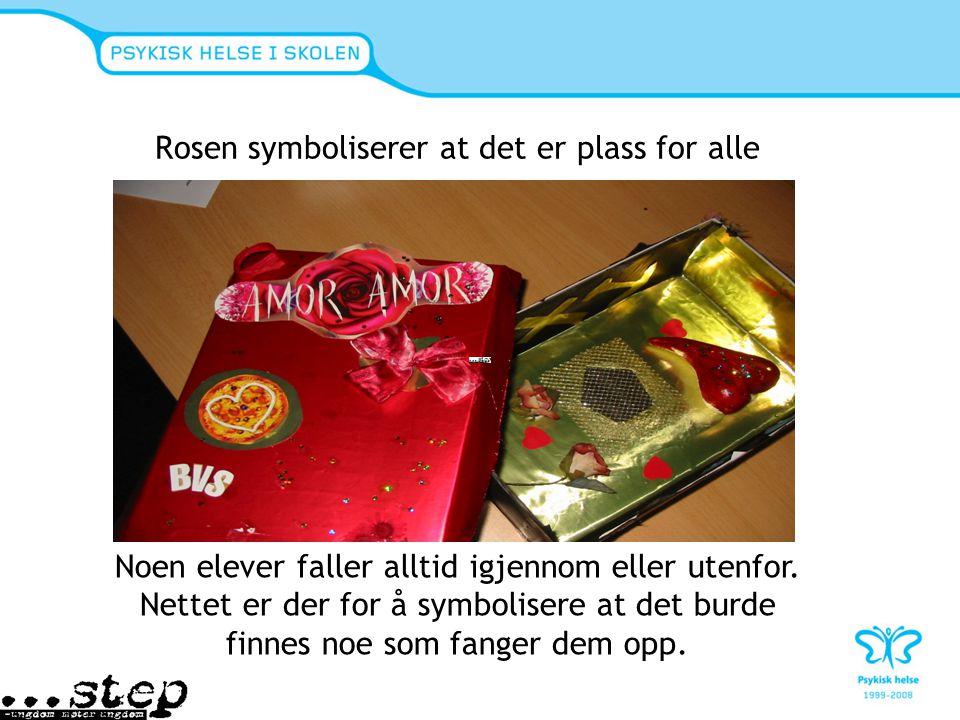 Rosen symboliserer at det er plass for alle Noen elever faller alltid igjennom eller utenfor. Nettet er der for å symbolisere at det burde finnes noe
