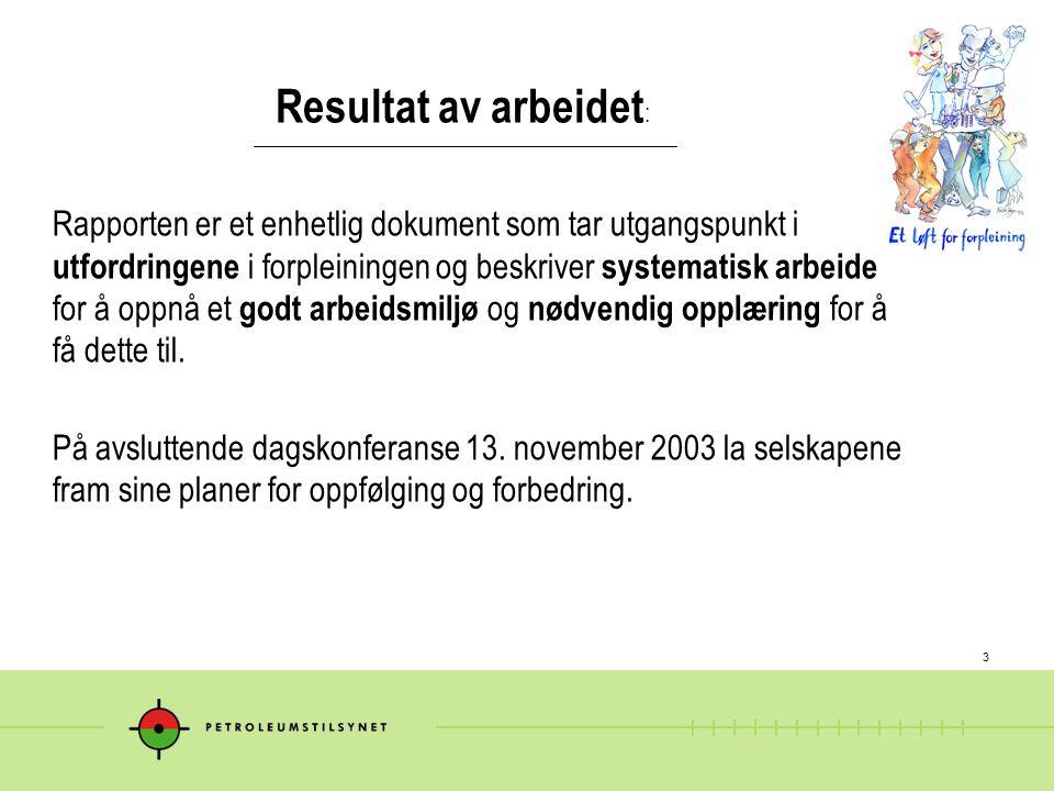 3 Resultat av arbeidet : Rapporten er et enhetlig dokument som tar utgangspunkt i utfordringene i forpleiningen og beskriver systematisk arbeide for å