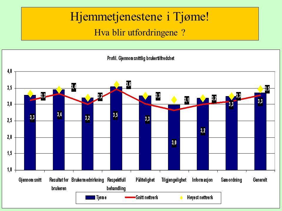 Hjemmetjenestene i Tjøme! Hva blir utfordringene ?