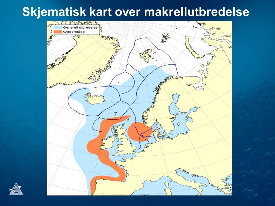 Skjematisk kart over makrellutbredelse