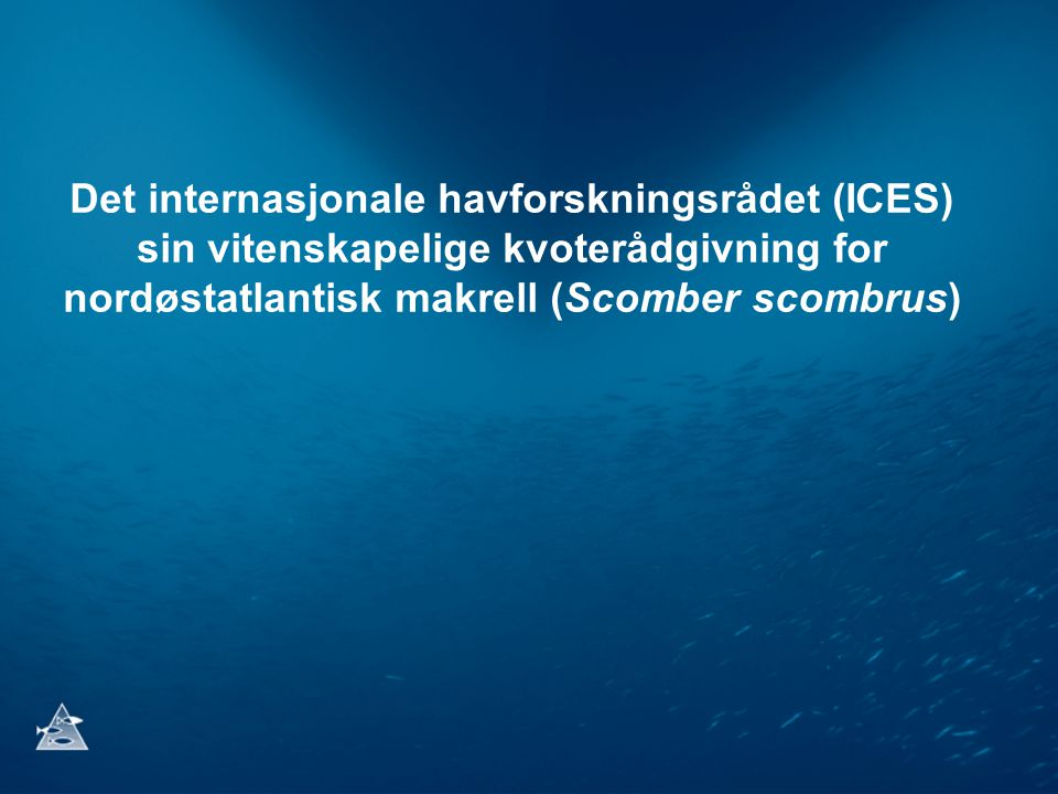 Vitenskapelige grunnlag anno 2012 Bestandsberegningsmodell •Aldersbasert analytisk (ICA) Input data •Fangstdata og en enkelt toktindeks (makrelleggtokt gjennomført hvert tredje år for å estimere gytebestanden).
