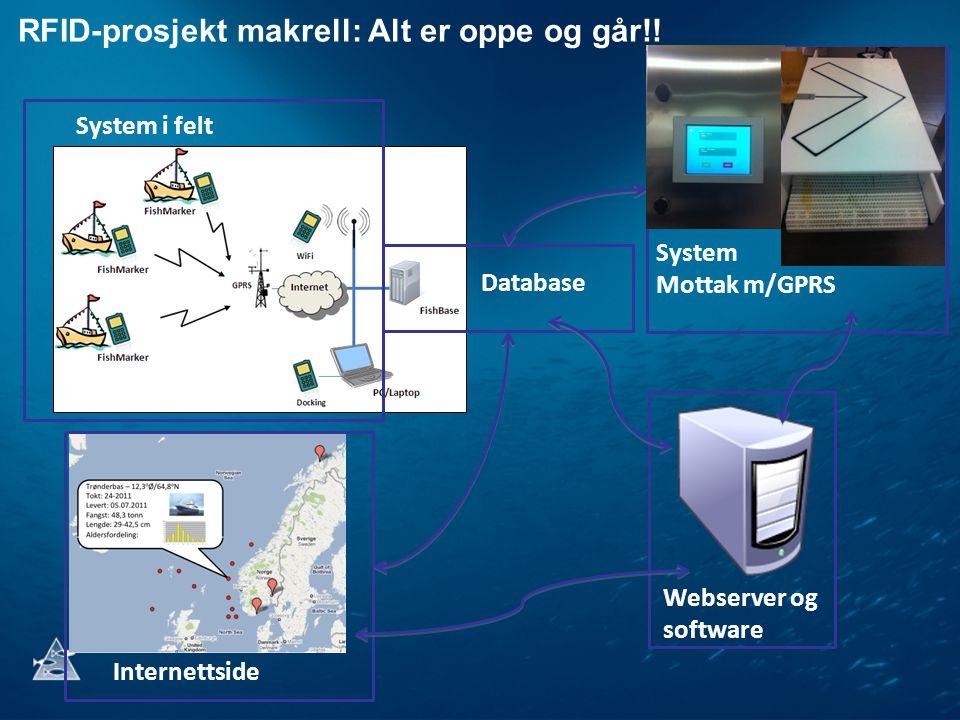 RFID-prosjekt makrell: Alt er oppe og går!.