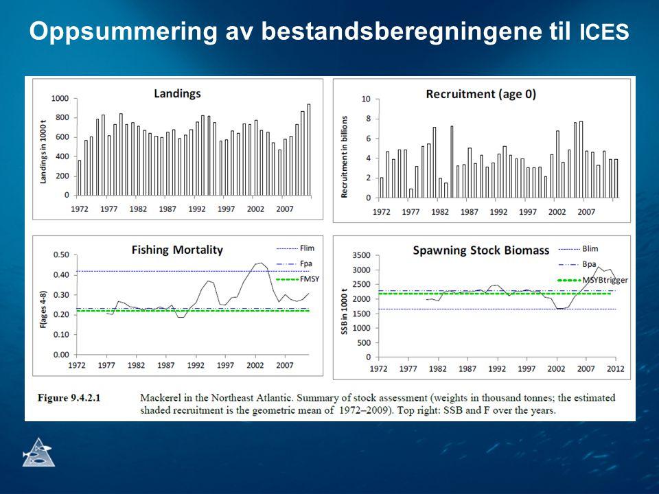 Vitenskapelig råd for 2013 •ICES gir råd i henhold til den internasjonale forvaltningsplanen for makrell som ble undertegnet av Norge, EU og Færøyene i 2008.
