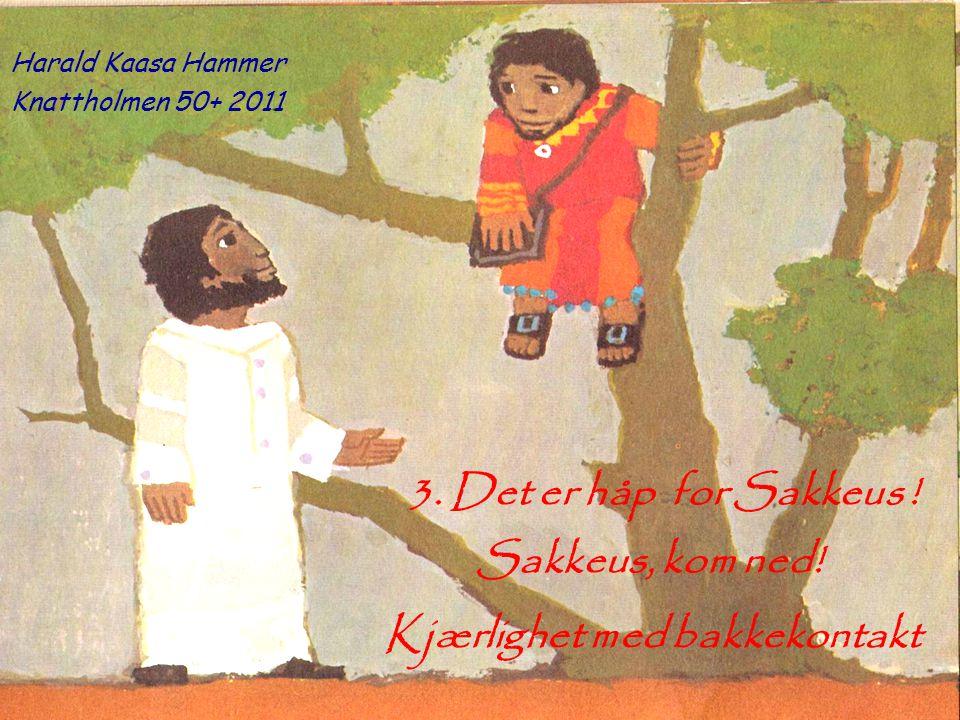 3. Det er håp for Sakkeus ! Kjærlighet med bakkekontakt Sakkeus, kom ned! Harald Kaasa Hammer Knattholmen 50+ 2011
