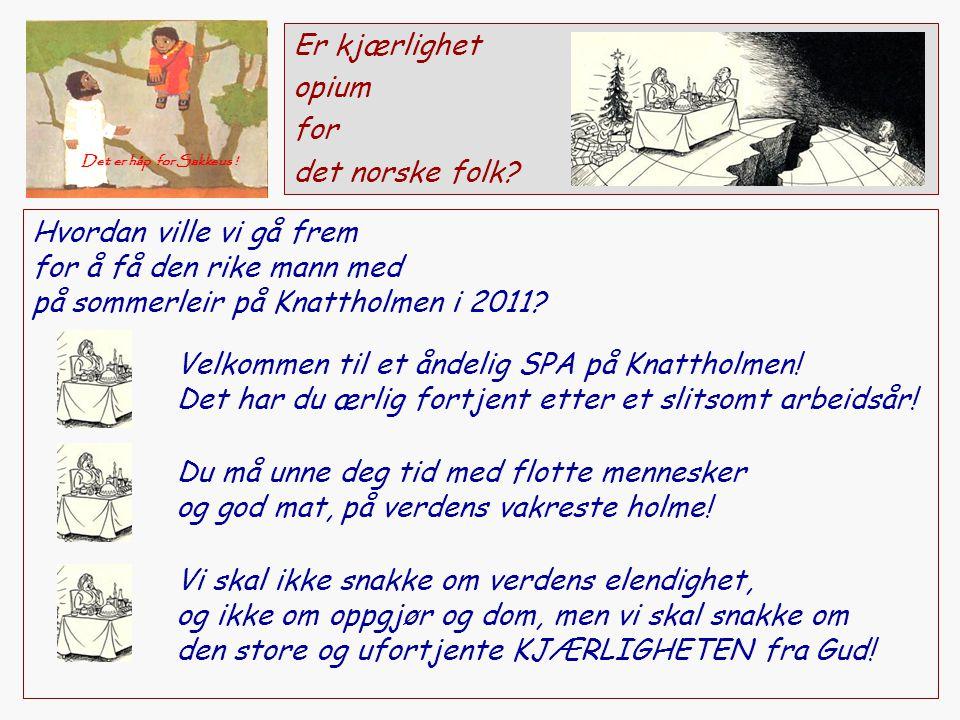 Er kjærlighet opium for det norske folk? Hvordan ville vi gå frem for å få den rike mann med på sommerleir på Knattholmen i 2011? Velkommen til et ånd