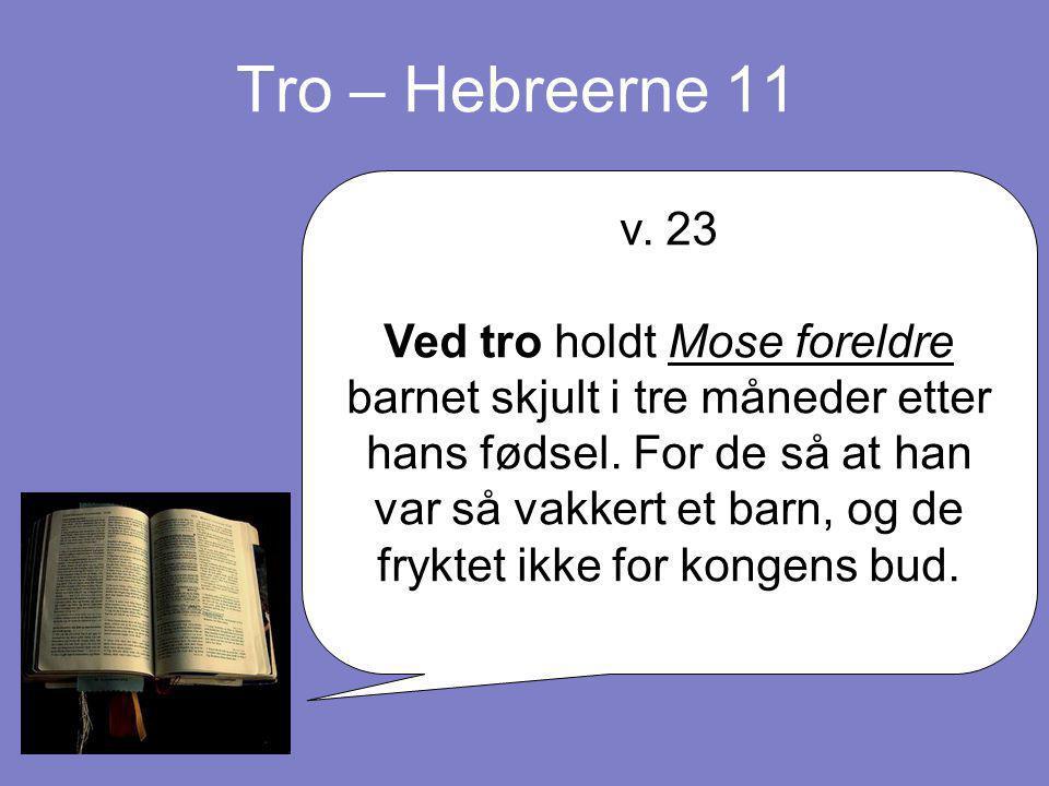 Tro – Hebreerne 11 v. 23 Ved tro holdt Mose foreldre barnet skjult i tre måneder etter hans fødsel. For de så at han var så vakkert et barn, og de fry