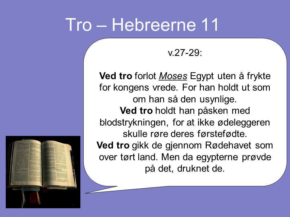 Tro – Hebreerne 11 v.27-29: Ved tro forlot Moses Egypt uten å frykte for kongens vrede. For han holdt ut som om han så den usynlige. Ved tro holdt han
