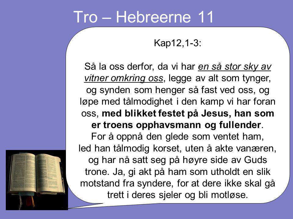 Tro – Hebreerne 11 Kap12,1-3: Så la oss derfor, da vi har en så stor sky av vitner omkring oss, legge av alt som tynger, og synden som henger så fast ved oss, og løpe med tålmodighet i den kamp vi har foran oss, med blikket festet på Jesus, han som er troens opphavsmann og fullender.