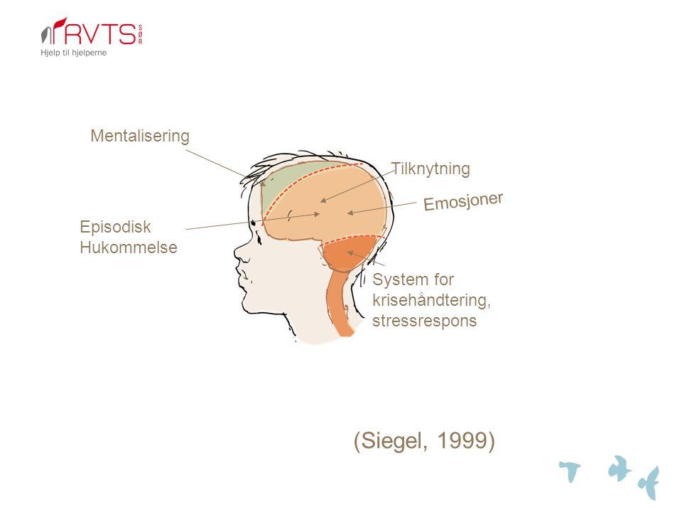 Tilknytning System for krisehåndtering, stressrespons Emosjoner Episodisk Hukommelse Mentalisering (Siegel, 1999)